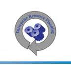 Enterprise Resource Planning - internal use only