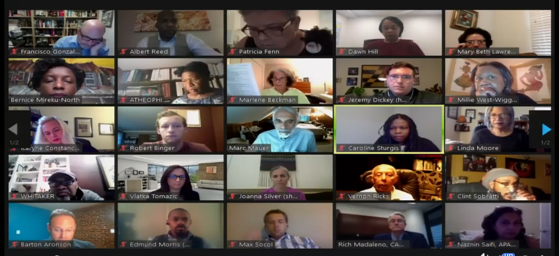 screenshot of online Task Force meeting participants